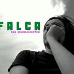 bannerfalca copy-min